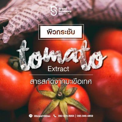 สารสกัดมะเขือเทศ (Tomato Extract)
