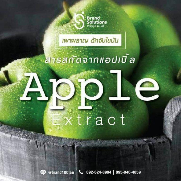 สารสกัดแอปเปิ้ลใ นอาหารเสริม