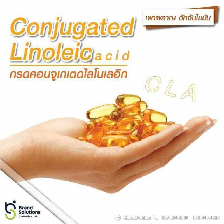 กรดคอนจุเกเตดไลโนลีอิก กรดไขมันช่วยลดความอ้วน อาหารเสริม CLA