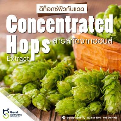 สูตรสารสกัดจากฮอป์ Concentrated Hops Extract
