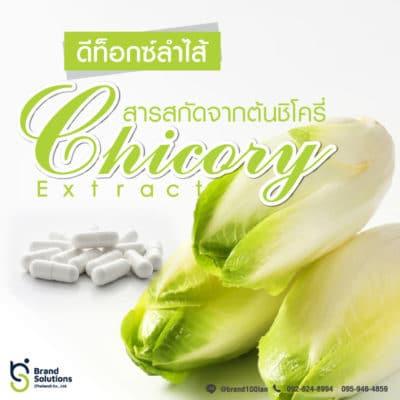 สูตรสารสกัดจากต้นชิโครี่ Chicory Extract