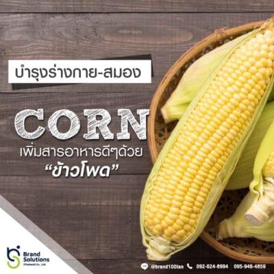 อาหารเสริม สูตรสารสกัดจากข้าวโพด Corn