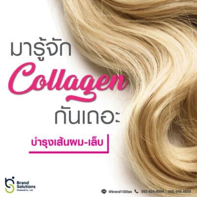 อาหารเสริม คอลลาเจน Collagen