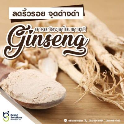 อาหารเสริม สูตรสารสกัดจากโสมเกาหลี Ginseng