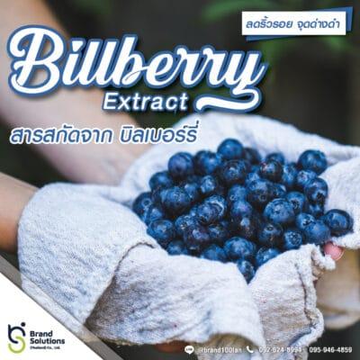 สูตรสารสกัดจากบิลเบอร์รี่ Billberry Extract