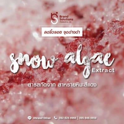 สูตรสารสกัดจากสาหร่ายหิมะสีแดง Snow algae Extract