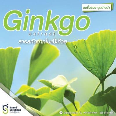 สูตรสารสกัดจากใบแปะก๊วย Ginkgo Extract