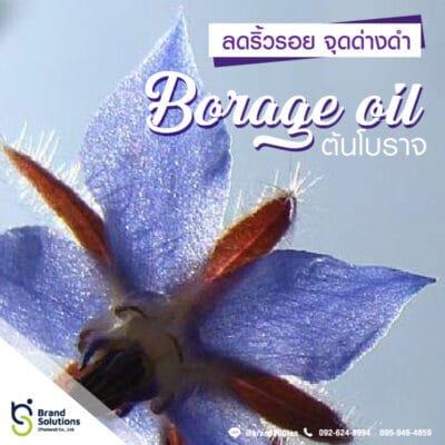 อาหารเสริม สูตรสารสกัดจากต้นโบราจ Borage oil