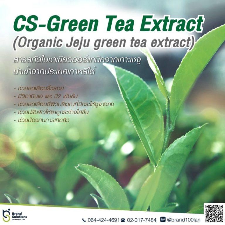 CS-Green Tea Extract สารสกัดใบชาเขียวออร์แกนิค