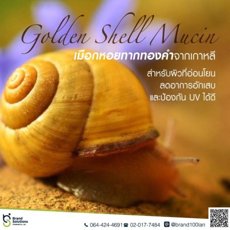 Golden Shell Mucin สารสกัดจากเมือกหอยทากทองคำ